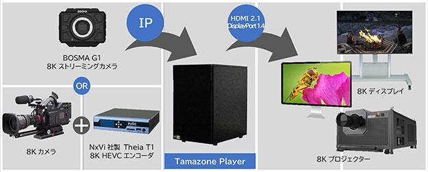 Tamazone Player HP-7524